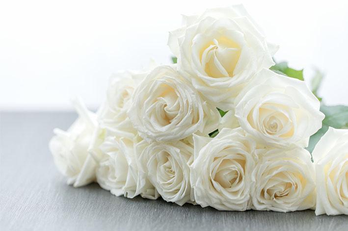 花 白い 言葉 バラ